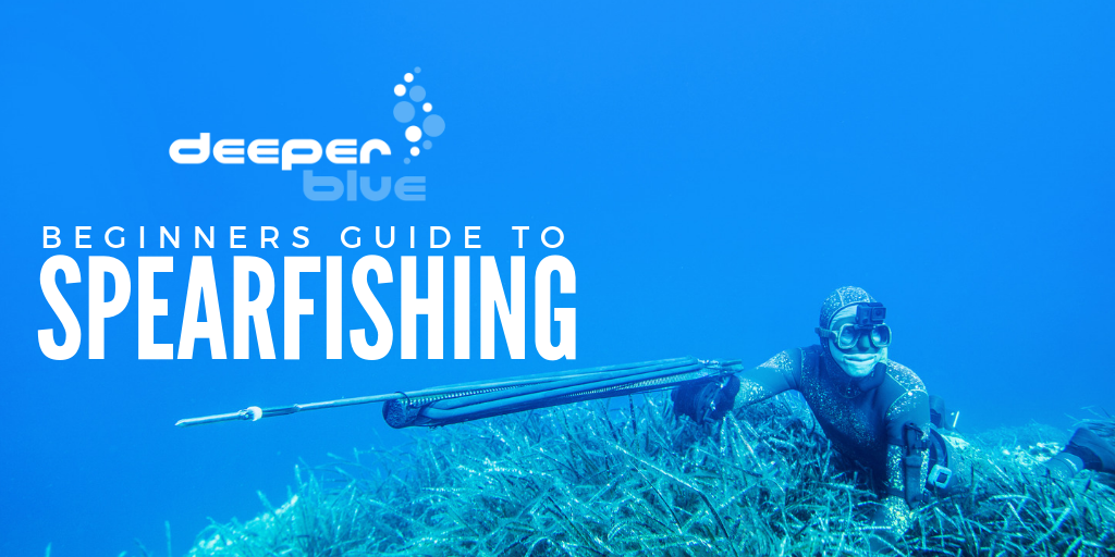 Beginners Guide to Spearfishing (2).png