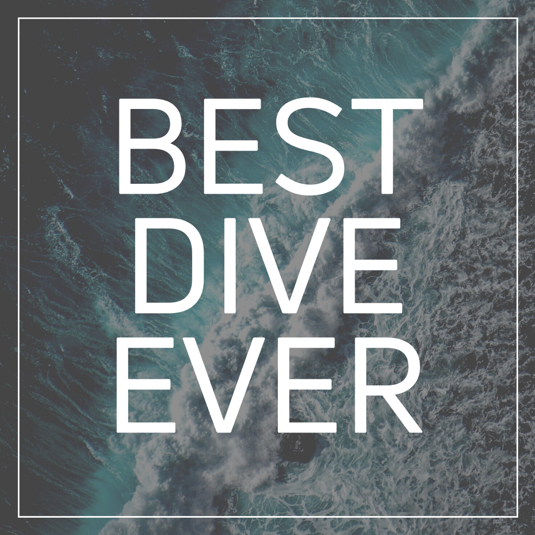 Best Dive Ever 1.png