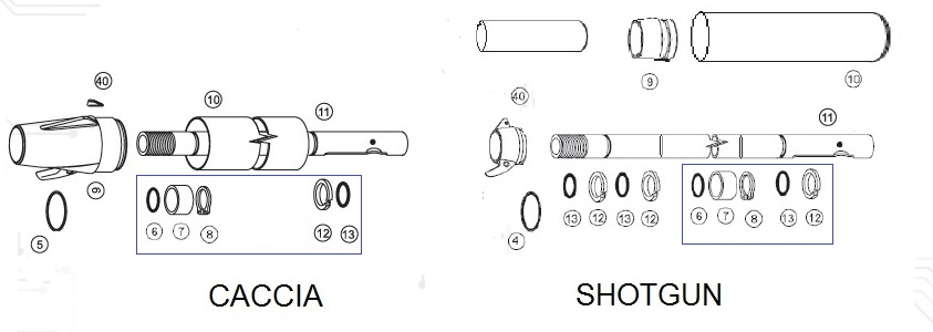 CACCIA and SHOTGUN differences.jpg