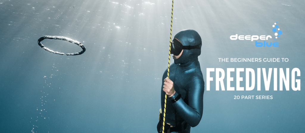 DeeperBlue.com-The-Beginners-Guide-to-Freediving-Large-Banner.png
