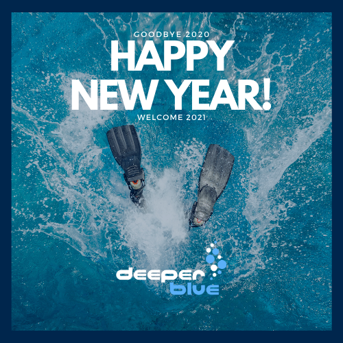 DeeperBlue Happy New Year - 500px.png