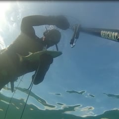 Spearfishing Guernsey