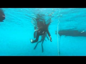 Portroe freediving Training, Ireland http://freediving.ie