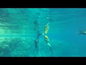 33m FIM, 2mins, best dive of the week